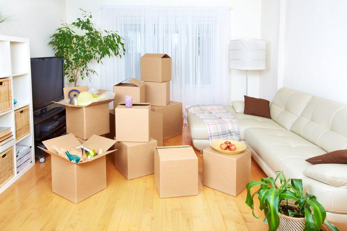 Apartment Essentials Lombard IL