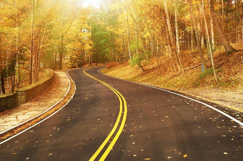 Fall Driving Dangers Auto Insurance Lombard IL